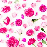 Pattern of pink rose flowers, petals and peonies on white background. Flat lay, Top view. Flowers texture. royalty free stock photos