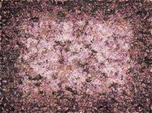 Pattern of pink stone Stock Image