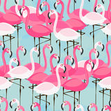 Pattern with pink and white flamingos. Vector seamless pattern with pink and white flamingos on blue background Royalty Free Stock Image