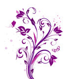 Pattern plum Royalty Free Stock Images
