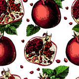 Pattern with pomegranate Royalty Free Stock Photos
