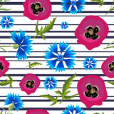 Pattern with Poppies,Cornflowers and stripes-01 Royalty Free Stock Images