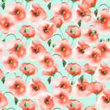 Pattern with a poppies Royalty Free Stock Photos