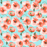Pattern with a poppies Royalty Free Stock Photo