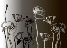 Pattern poppy background flower wallpaper nature. Spring Stock Image