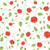 Pattern of poppy flowers Royalty Free Stock Images