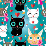 Pattern of portraits of cats Stock Images