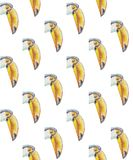 Pattern of portraits of toucans with a large beak royalty free illustration
