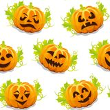 Pattern pumpkin for Halloween Royalty Free Stock Image