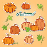 Pattern with pumpkins Stock Photos