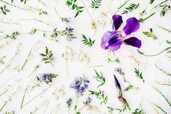 Pattern with purple iris and lily of the valley flowers Stock Photography