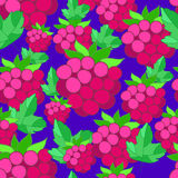 Pattern of raspberries on background. Pattern of raspberries on a bright blue background Royalty Free Stock Photography