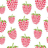 Pattern with raspberries of different size Stock Image