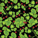 Pattern with raspberry. On brunch Stock Photo