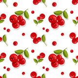 Cranberry seamless vector pattern Wallpaper. berries. Seamless pattern. Red berries on a branch with green leaves. Vector illustration. Background pattern Stock Photos