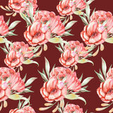 Pattern with red flowers Royalty Free Stock Images