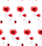 Pattern with red poppies Stock Images