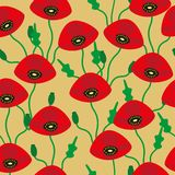 Pattern of red poppies Stock Photography