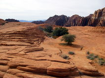 Pattern of Red Rocks. A pattern formed by red rocks at Snow Canyon Park in St. George, Utah Stock Image