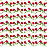 Pattern red rose on a stalk of green leaves Royalty Free Stock Photos