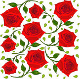 Pattern of red roses with green leaves Royalty Free Stock Images