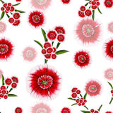 Pattern of red and white flowers Stock Photography
