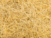 Pattern of rice straw. Top view stock images