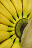 Pattern of the ripe bananas Stock Images