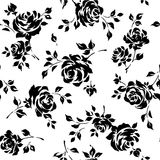 Pattern of rose, Royalty Free Stock Photography
