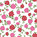 Pattern of rose, Stock Image
