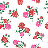 Pattern of rose, Royalty Free Stock Photos