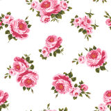 Pattern of the rose. I painted a rose decoratively Stock Image