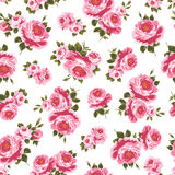 Pattern of the rose. I painted a rose decoratively Stock Images