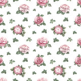 Pattern with rose illustration Royalty Free Stock Images