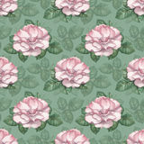 Pattern with rose illustration Stock Photo