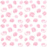 Pattern of rose. stock photography