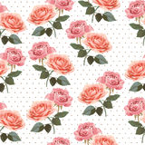 Pattern with roses. Seamless pattern with roses, isolated Stock Photo