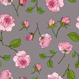 Pattern of roses, buds and leaves on a gray background. Vector vector illustration