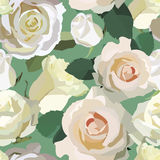 Pattern with roses. Illustration of a pattern with white roses on a green background Royalty Free Stock Photo