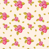 Pattern with roses. Stock Image