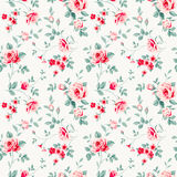 Pattern with roses Royalty Free Stock Image