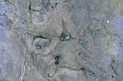 Surface of the Gris Sainte Anne marble stone treated Royalty Free Stock Image