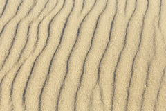 Pattern of sandy beach Royalty Free Stock Photos