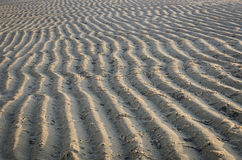 Pattern of sea sand. On the beach Royalty Free Stock Photos