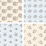 Pattern of sea shells Royalty Free Stock Photography