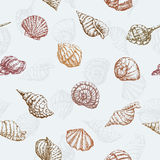Pattern of the sea shells Stock Photos