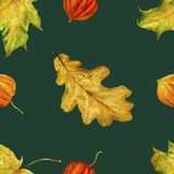 Pattern is seamless with autumn leaves. Watercolor handmade leaves. Royalty Free Stock Images