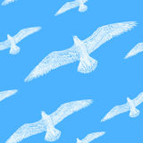 Pattern seamless texture white seagull in the sky blue Royalty Free Stock Photography