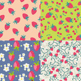 Pattern set with a strawberry - Illustration Royalty Free Stock Image