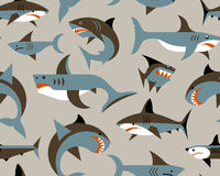 Pattern with sharks Stock Photography